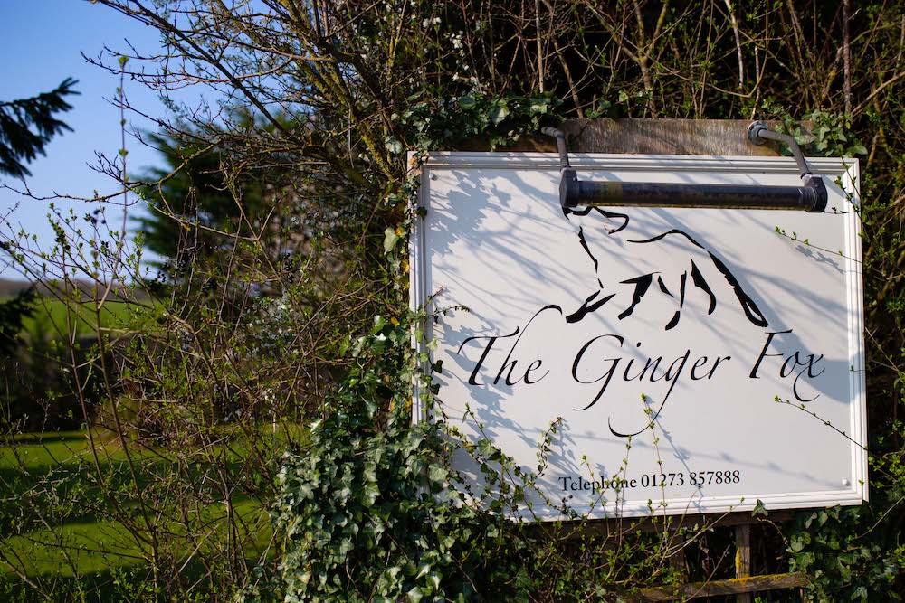 The Ginger Fox