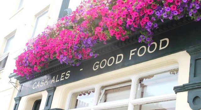 The Sussex Yeoman, Food Pub, Gastro Pub, Dog friendly pubs Brighton