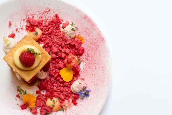 Rasberry dessert - ariel view