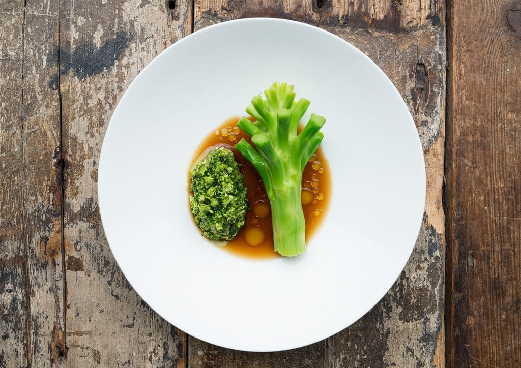 Broccoli vegetarian vegan brighton