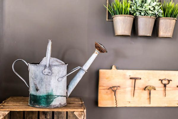 Watering can at Grow 40 Restaurant Brighton