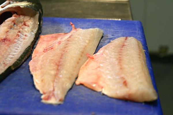 The Salt Room Restaurant, Hilton Metropole, Seafood restaurant, fish, Brighton Seafront