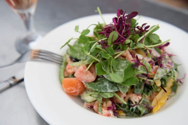 Lunch in Brighton - 100 Food Things To Do In Brighton