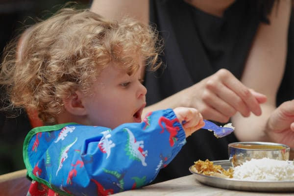 curry leaf cafe child friendly