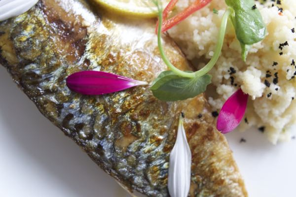 Restaurants Brighton, Six, Hove_1600