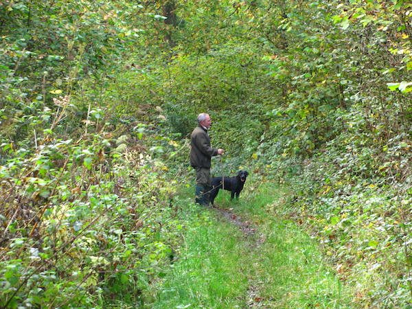Andy Foraging
