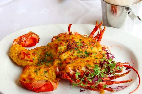 Lobster Thermidor at English's Brighton (Image credit: English's of Brighton')