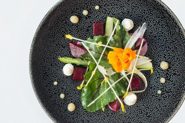 Salad at Drakes Restaurant in Brighton. Drakes has head chef Andy Vitez and he is regarded as one of the best chefs and this is one of the best restaurants in Brighton