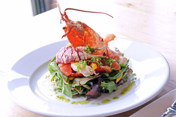 Lobster salad at Riddle and Finns Brighton, Sunday lunch, gluten free restaurants Brighton,