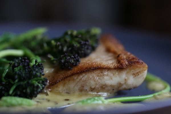 Halibut close up - How to make Béarnaise sauce, Grow 40, Restaurant, North Laine, Brighton