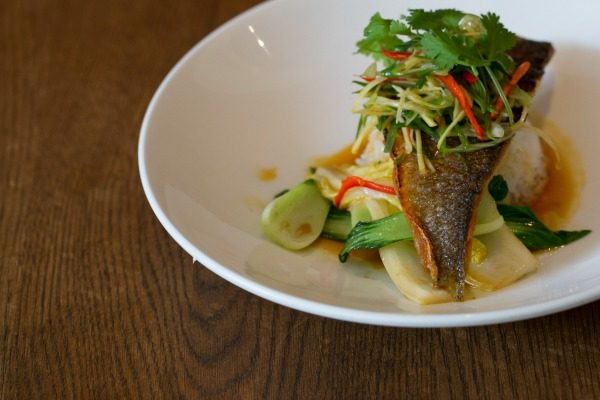 Fish dish at Limes of Lindfield