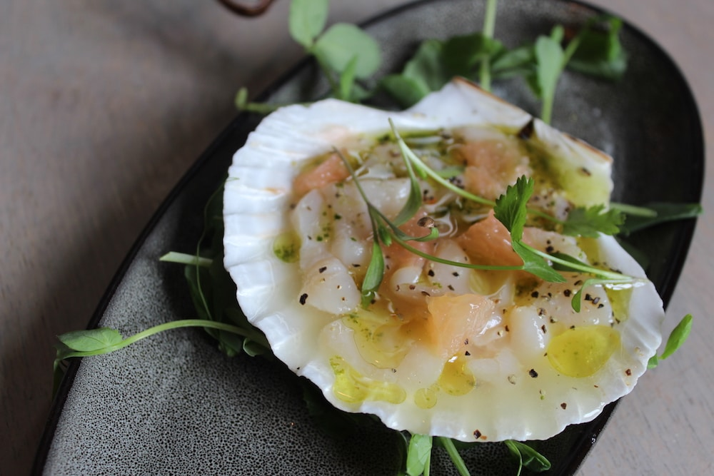Scallop at The Urchin in Hove