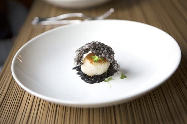 Etch, Hove, restaurant, fine dining, scallop, seafood