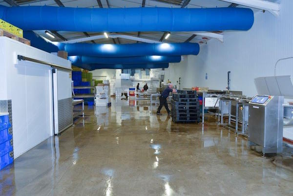 Factory - Brighton & Newhaven Fish Sales, Brighton, Shoreham Harbour