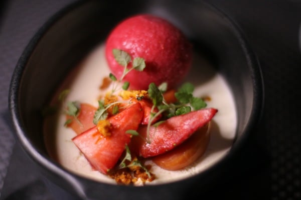 Vanilla panna cotta with berry sorbet and poached and fresh fruit