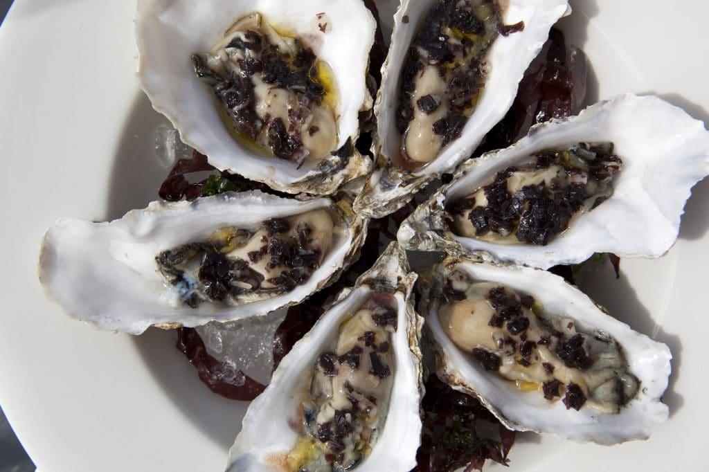 Oysters at Murmur Restaurant Brighton