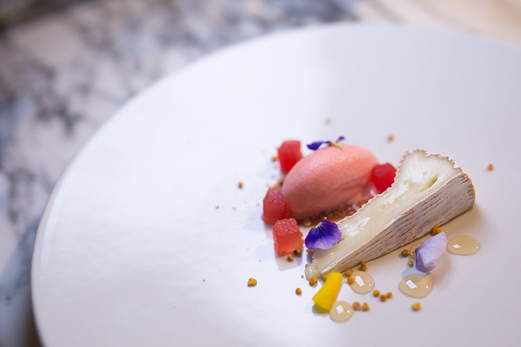 Pike and Pine, evening review, cheese, fine dining, Brighton restaurant