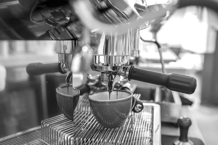 Starfish and Coffee, cafe, Brighton,