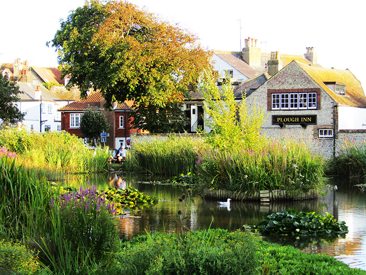 Picturesque pond and trees at The Plough Inn