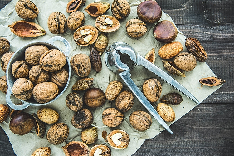 Packed lunches, walnuts with a cracker