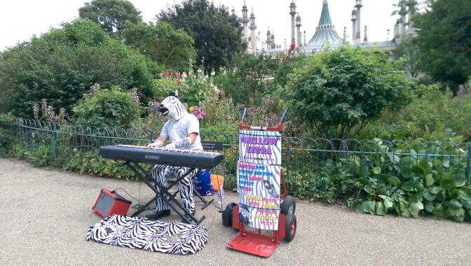 Mellow Zebra at Brighton Pavilion