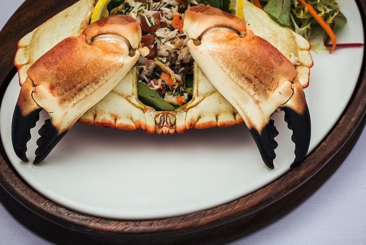 Shoreham dressed crab at Proud Country House, Stanmer House Brighton