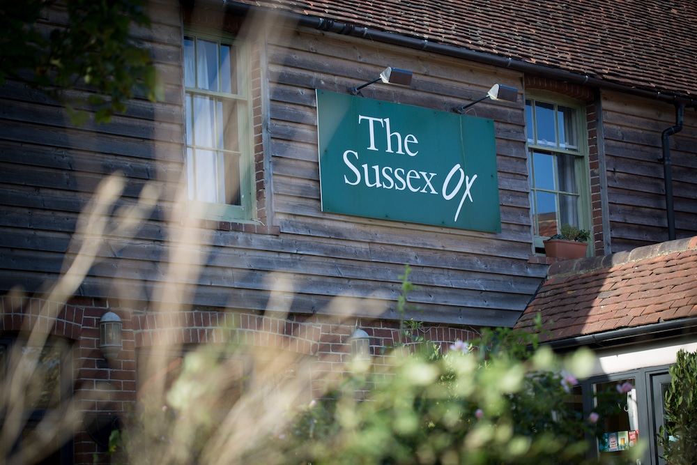 The Sussex Ox