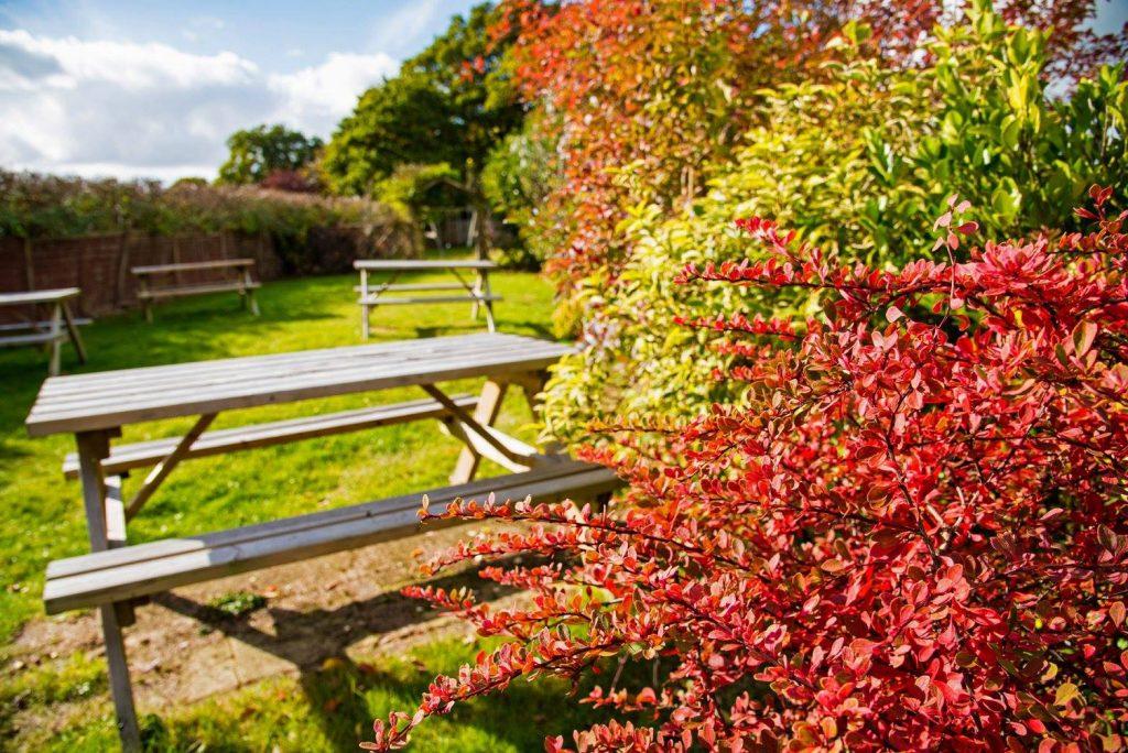 Garden at The Wheatsheaf Restaurants Brighton