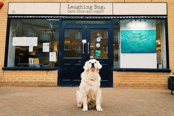 Exterior Laughing Dog Brighton
