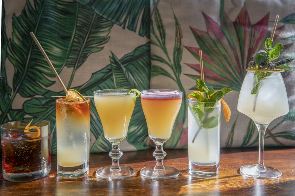 A lineup of cocktails
