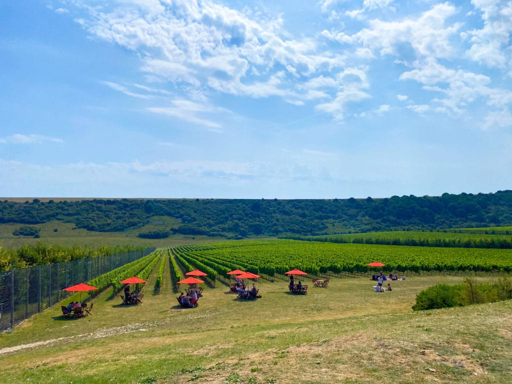 A view of Rathfinny vineyard with tables and chairs