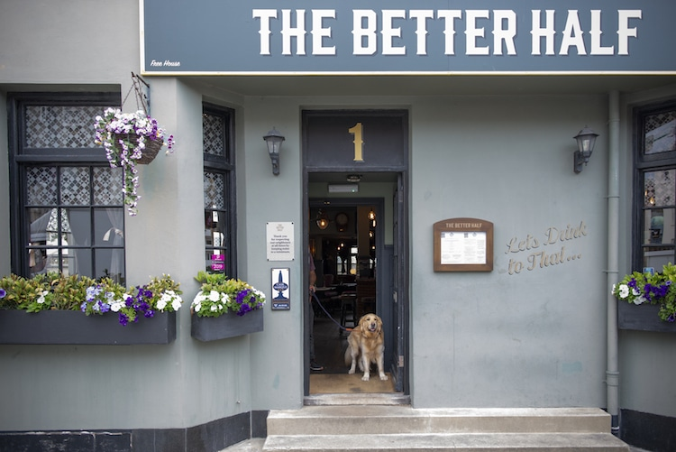 The Better Half Pub hove