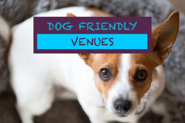 dog friendly pubs in Brighton and Sussex