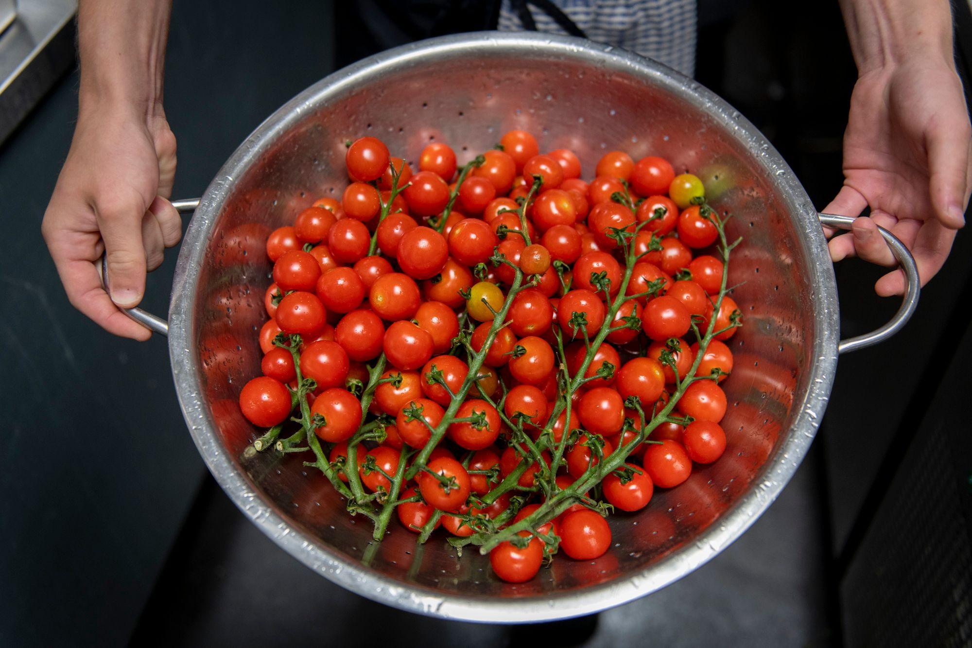 bowl full of cherry tomatoes