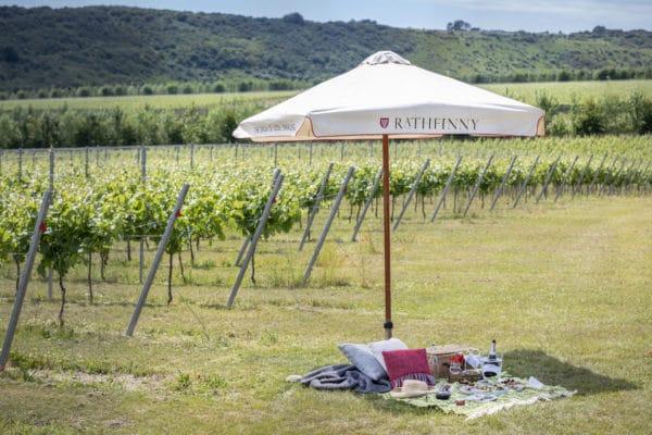 A picnic and umbrella in the Rathfinny wine estate