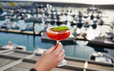 A bright cocktail with a herb garnish being held up with a sunny Marina view in the background.