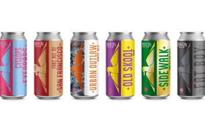 Product photography against a white background of cans of craft beer