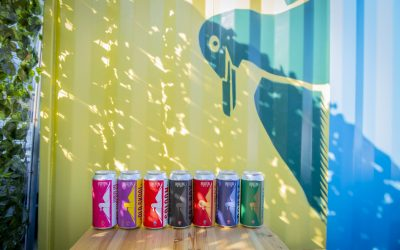 Beer Cans at Brighton Bier Brewery in front of a yellow wall with a blue penguin print.