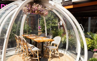 Alfresco dining in a globe style pod with a wooden table and chairs inside the pod on a sunny day