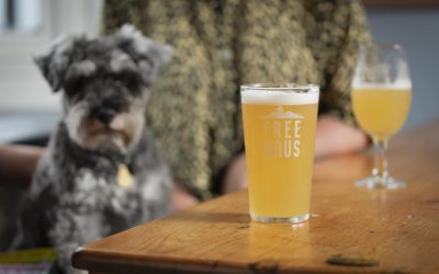 A dog and some pints of Brighton Bier at a pub table