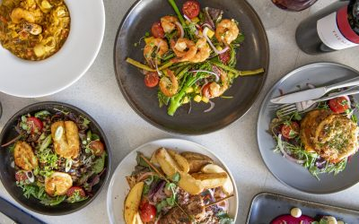 A variety of main dishes served on ceramic plates and bowls. Including a prawn salad with broccoli.