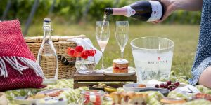Rathfinny wine estate picnic