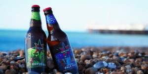Bottles of Dark Star beer on the beach pebbles with a sea view in the background.