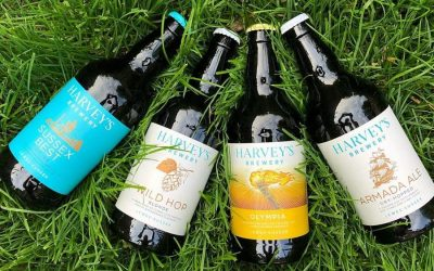 Bottles of ale laid out on the green Summer grass