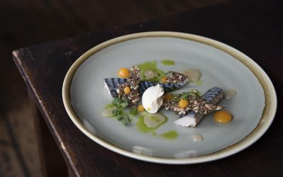 A light beautifully presented dish of fish with a herb sauce