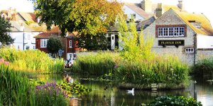 Picturesque pond and trees at The Plough Inn - 11X bus Brighton