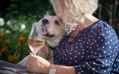 Marge the dog and publican, Chris, with a glass of wine in the garden at The New Inn garden.