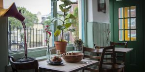 Window seat with a potted plant on the table