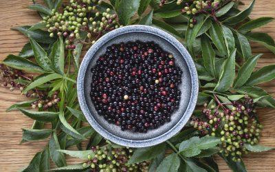 berries Kindling Restaurant